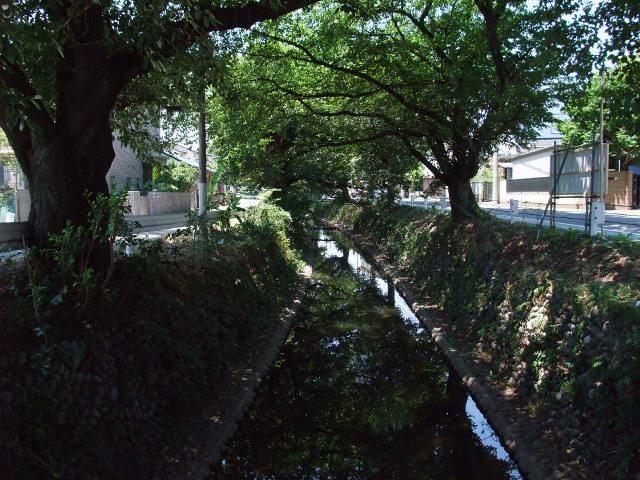 Blog2011_07160022