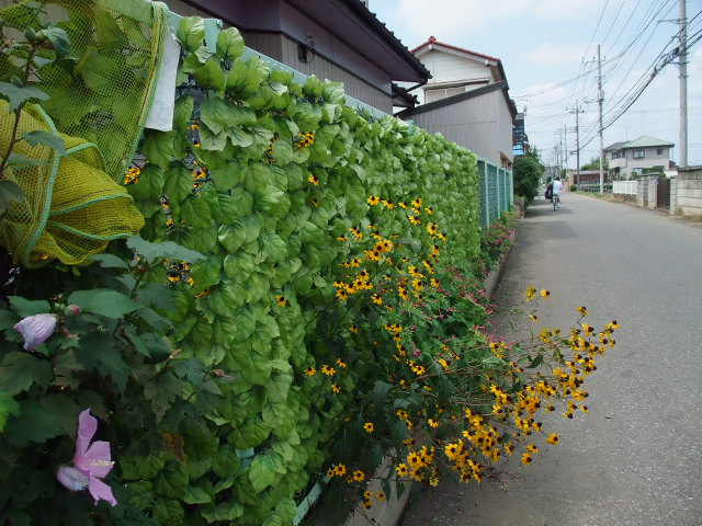 Blog2011_08280011