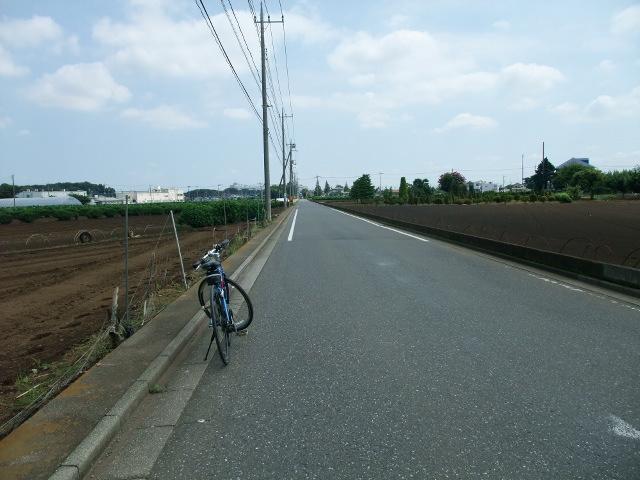 Blog2011_08280015