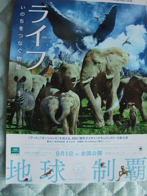 Blog2011_09080004