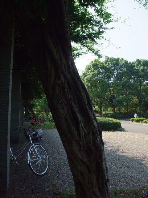 Blog2011_09140014