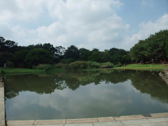 Blog2011_09190028