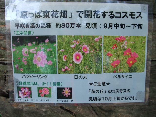 Blog2011_10070035
