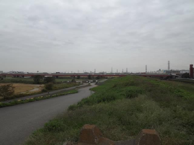 2011_10190020