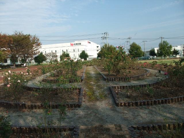Blog2011_10250046