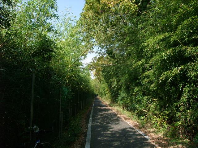 Blog2011_11040010