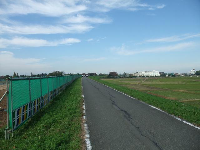 Blog2011_11090009