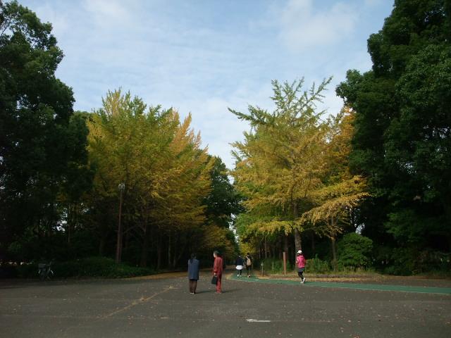 Blog2011_11100008