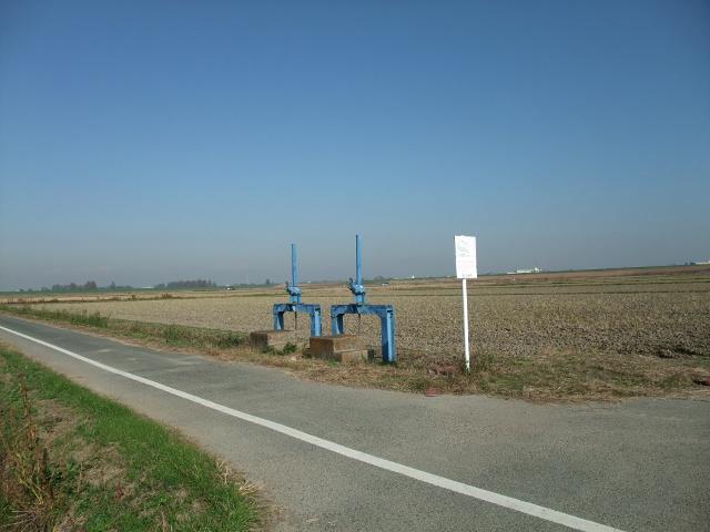 Blog2011_11240012