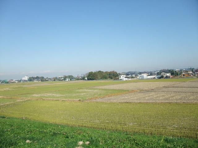 Blog2011_11240014