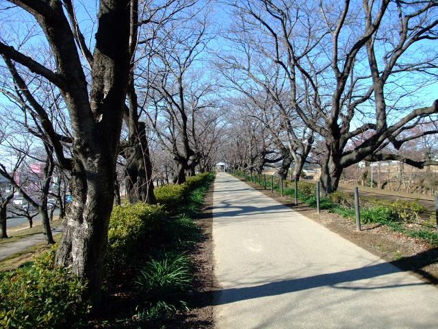 Blog2012_01300010