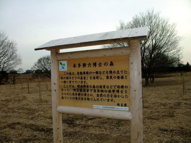 Blog2012_02130023