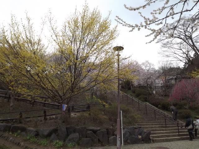 2012_04060044