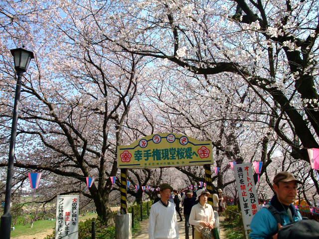 Blog2012_04100037