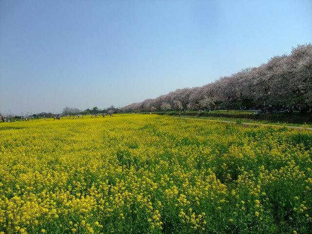 Blog2012_04100041