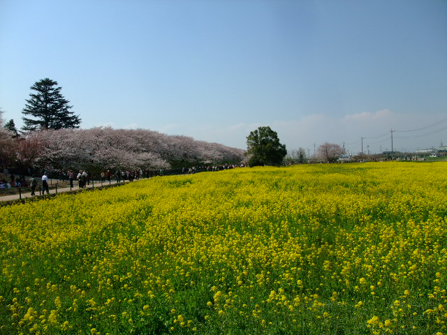 Blog2012_04100042