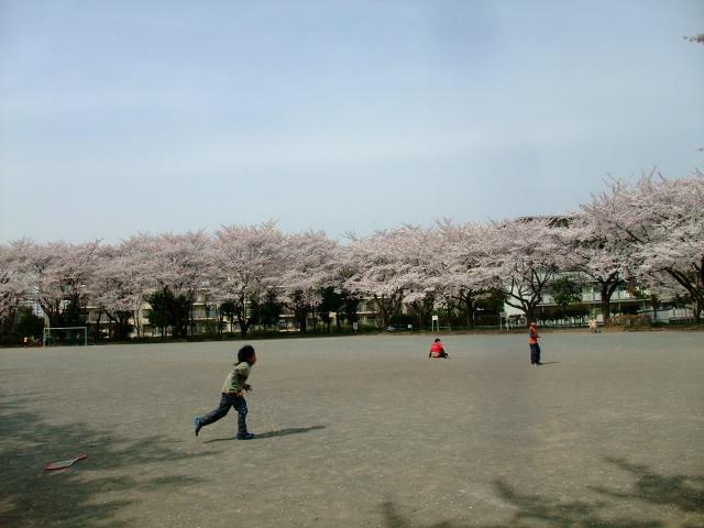 Blog2012_04100049