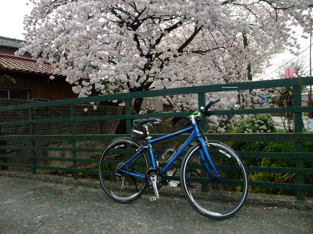 Blog2012_04100061