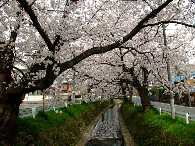 Blog2012_04100063