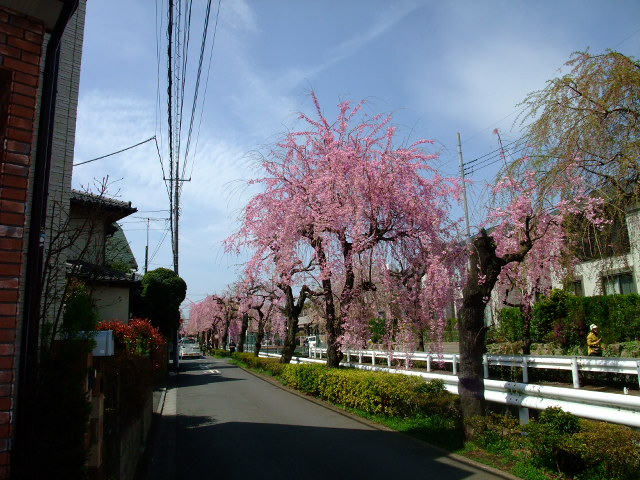 Blog2012_04150030