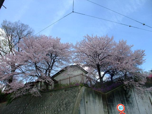 Blog2012_04150039