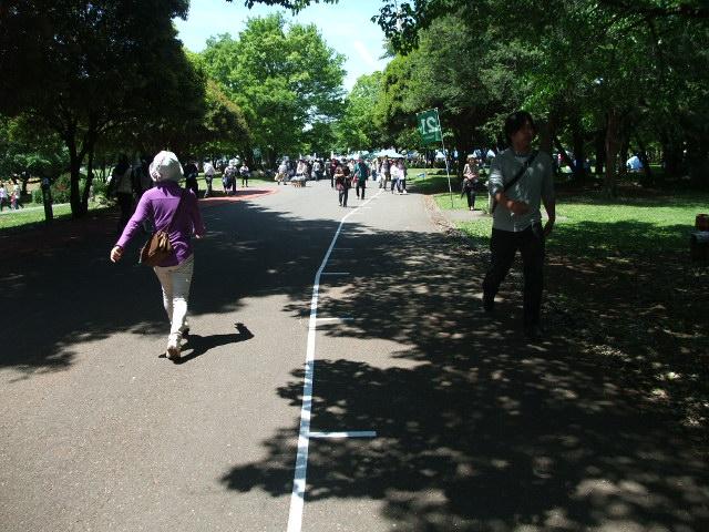 Blog2012_05130027