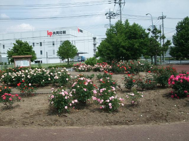 Blog2012_05210028