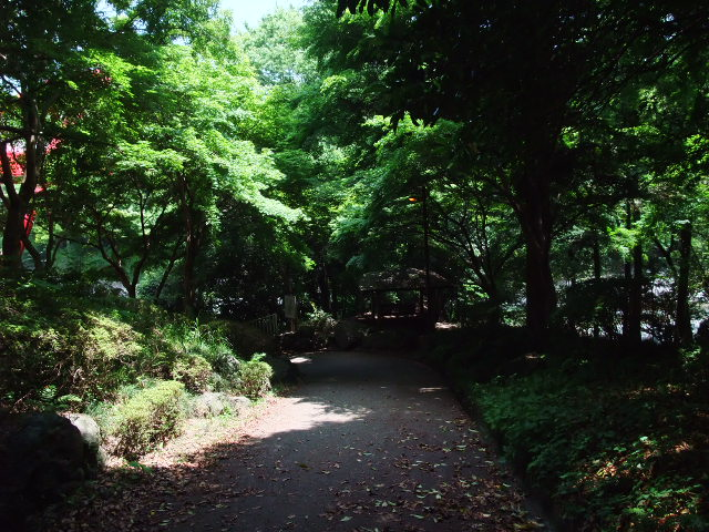 Blog2012_06010026
