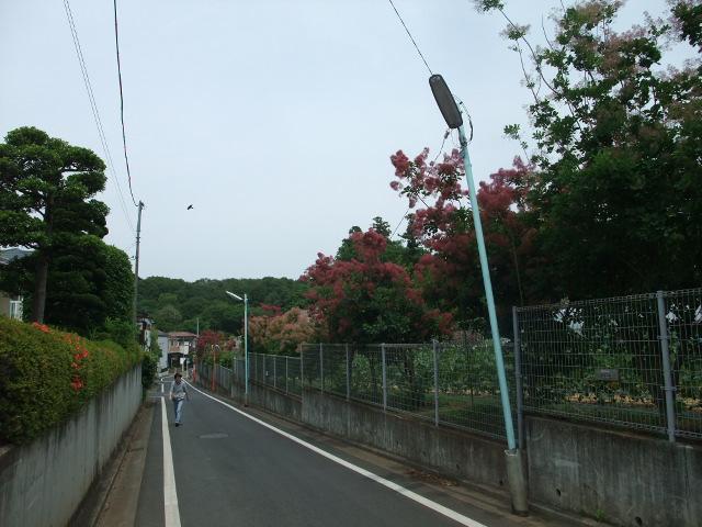 Blog2012_06020045