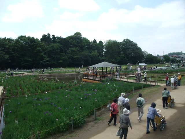 Blog2012_06140053