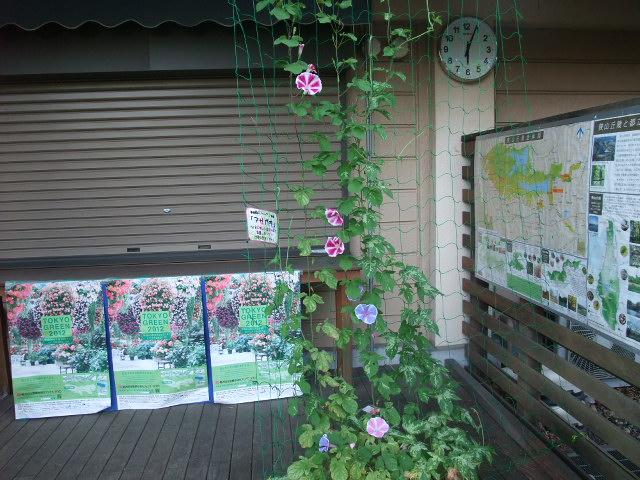 Blog2012_08060015