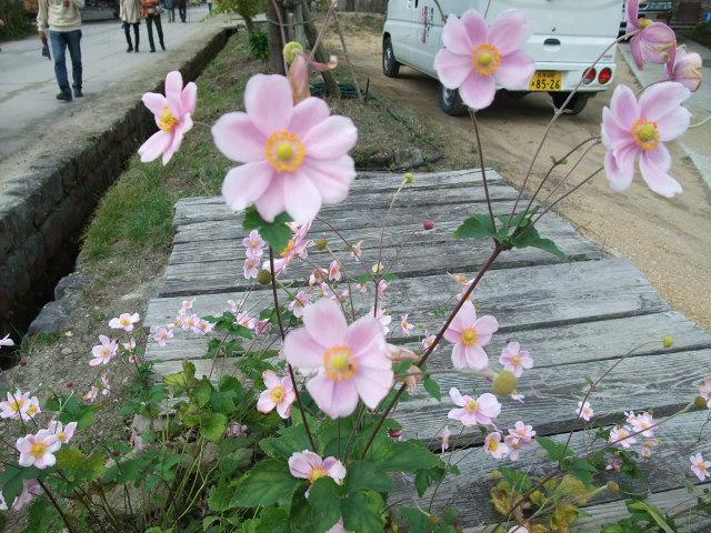 Blog2012_10150085