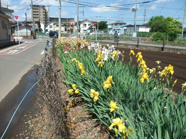 Blog2013_05120040