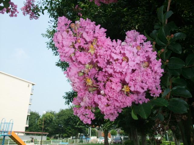 Blog2013_08090018