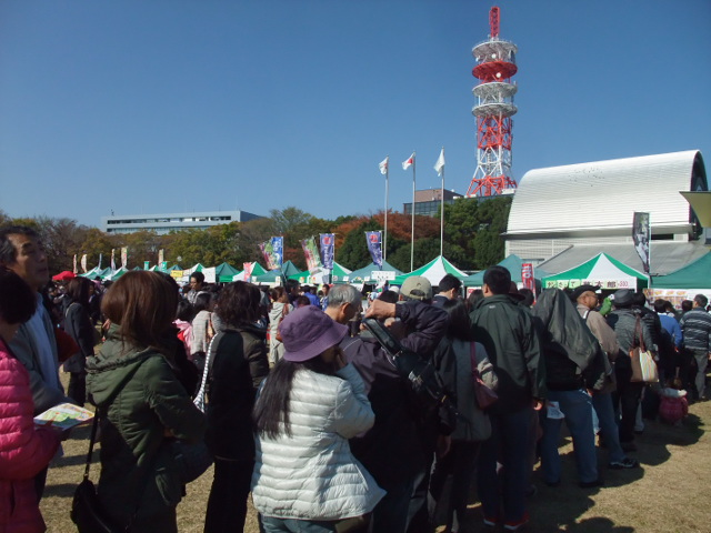 Blog2013_11160015