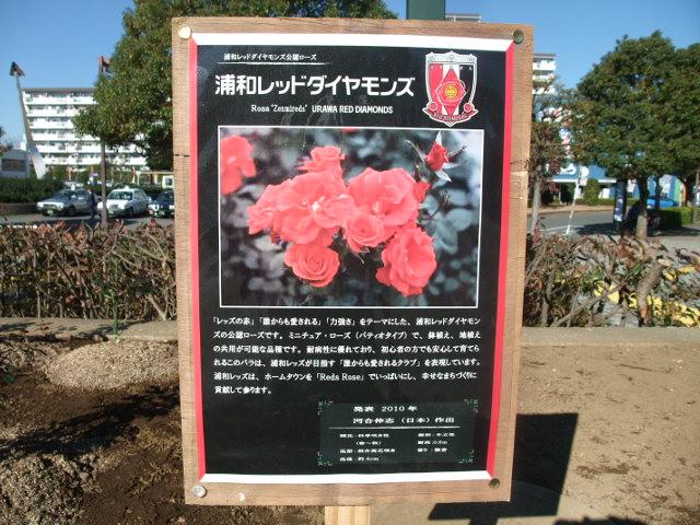 Blog2013_12010028